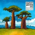 IMAGINARY AFRICA TRIO
