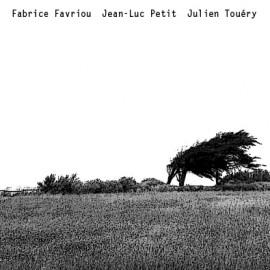 FABRICE FAVRIOU -  JEAN-LUC PETIT -  JULIEN TOUERY