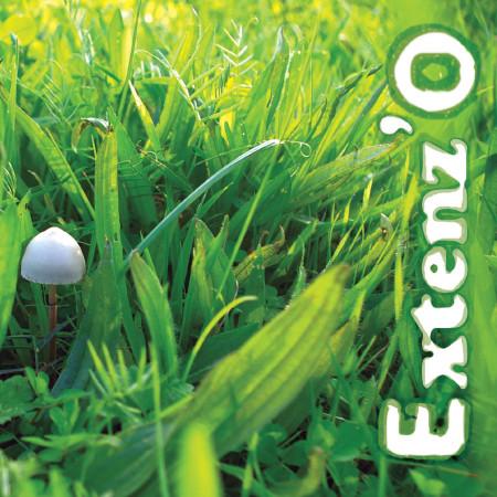 EXTENZ'O
