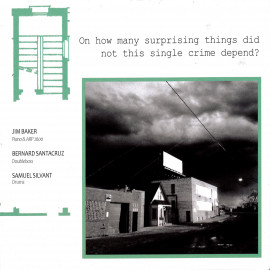 ON HOW MANY SURPRISING THINGS DID NOT THIS SINGLE CRIME DEPEND?